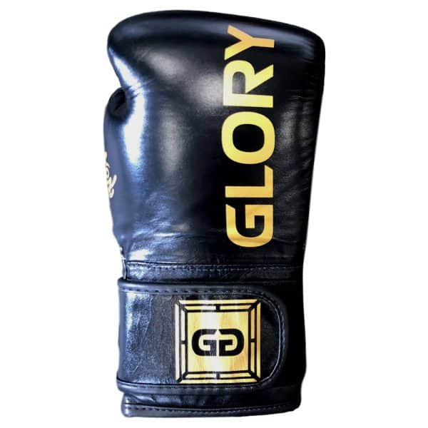 fairtex-bgvg1-glory-hook-and-loop-boxing-gloves-right-top.jpg